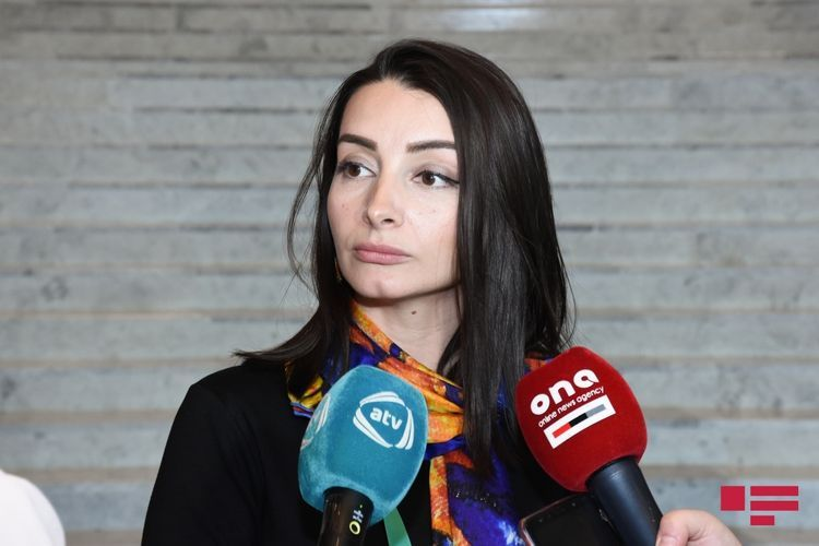 Azerbaijani MFA: Pashinyan should participate in the decision-making at the negotiating table putting aside his excuses