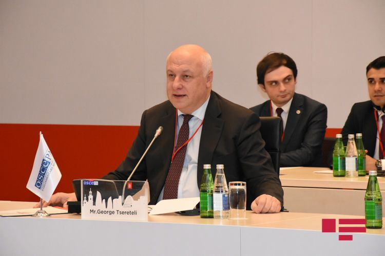 """OSCE PA President: """"Nagorno Garabagh conflict which painful for Europe, should be resolved"""""""