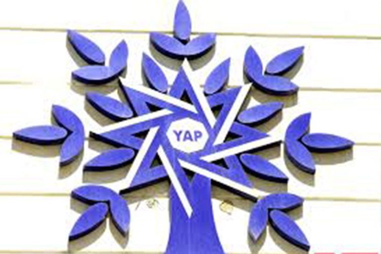 NAP adopts decision on participation in early parliamentary elections