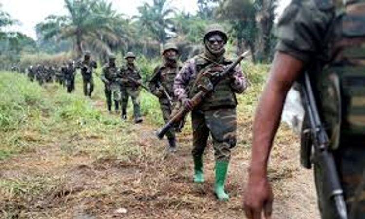 DR Congo army captures 400 Rwandan armed rebels