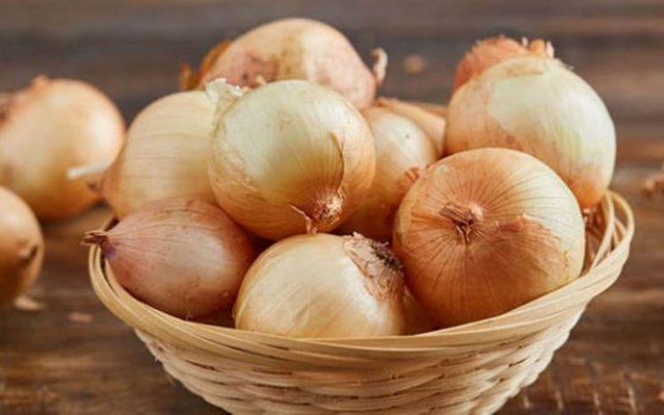 Azərbaycan Şərqi Avropaya soğan ixracını genişləndirəcək