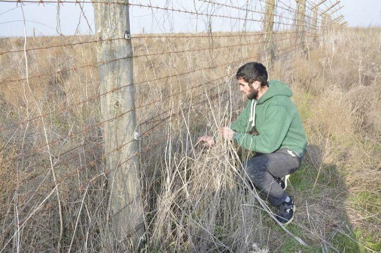 Pakistani and Algerian citizens, violating Azerbaijani state border, detained