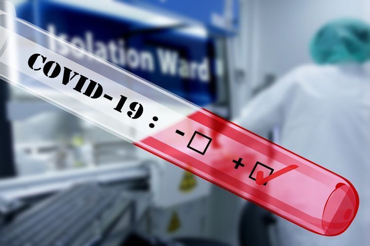 Число заразившихся коронавирусом в Нидерландах превысило 15 тысяч