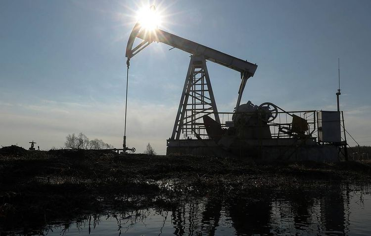 Oil market crisis to push investment in sector down to 13-year low, says IEA