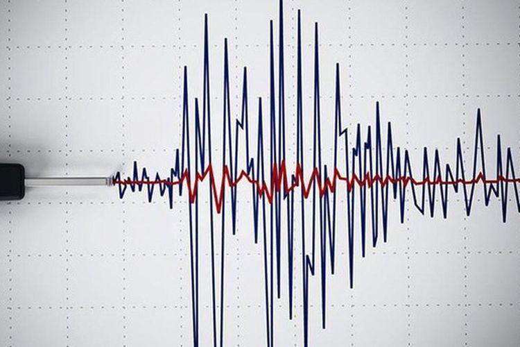 Earthquake hits Georgia