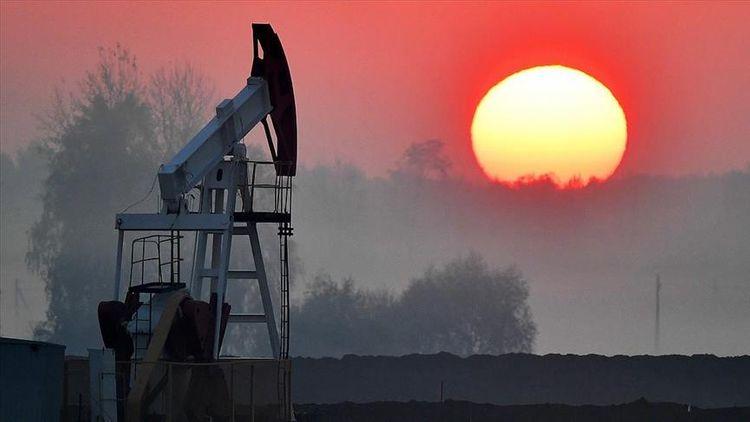 Brent oil falls by 10% below $23 per barrel