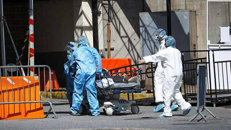 Italy documents 535 deaths from coronavirus