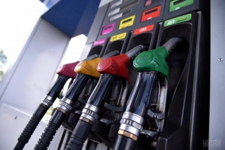 U.S. petroleum consumption decreases by 31%