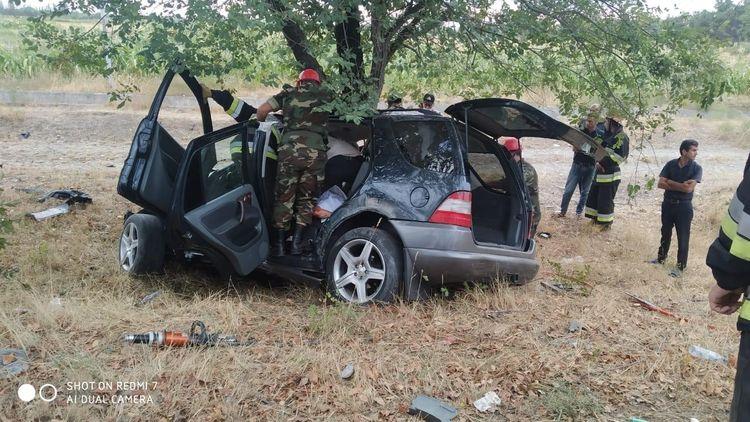 """Şabranda """"Mercedes"""" markalı minik avtomobili ağaca çırpılıb, 2 nəfər ölüb - <span class='red_color'>FOTO</span>"""