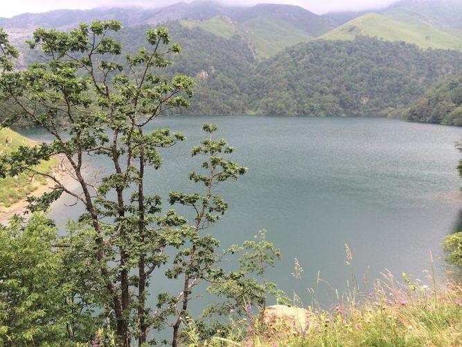 С завтрашнего дня в Азербайджане открываются национальные парки