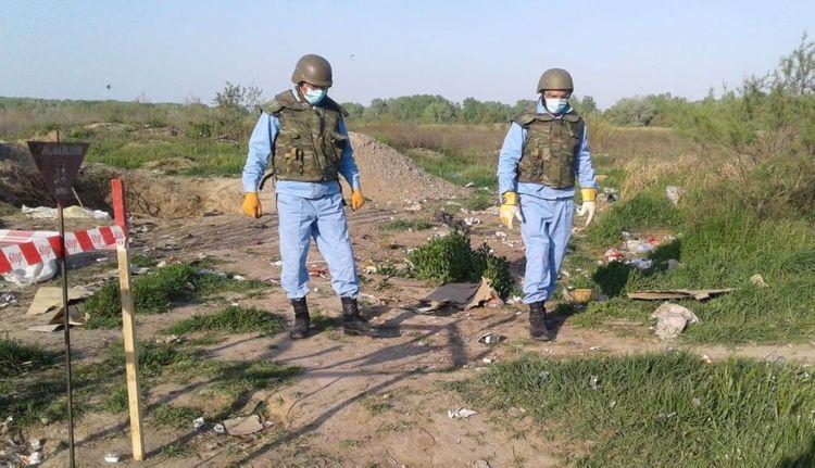 Füzuli rayonunda 9 ədəd mina aşkarlanıb