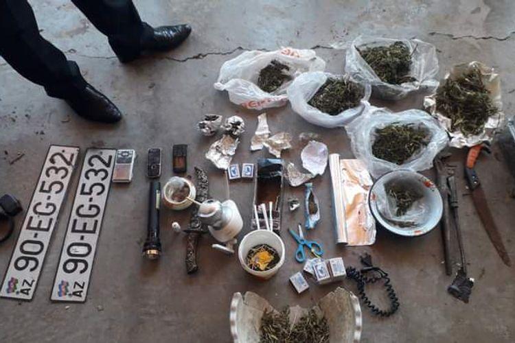 Yevlax sakininin plantasiyasında 400 kq narkotik aşkarlanıb