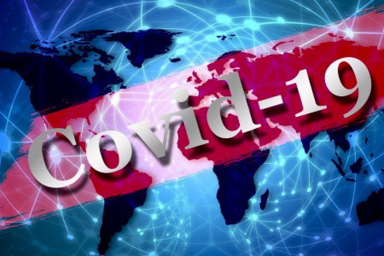 Обнародована статистика инфицирования COVID-19 по стране