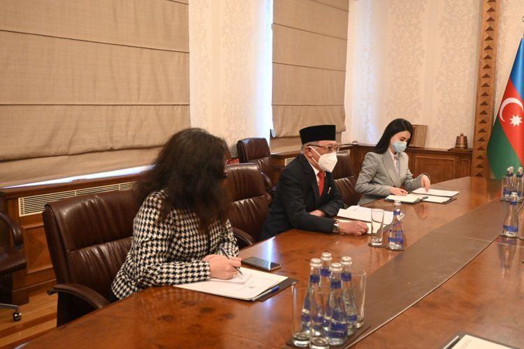 Джейхун Байрамов встретился с новым послом Индонезии