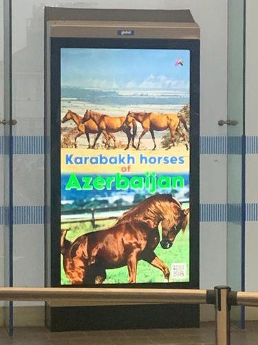 London metrosunda Azərbaycanla bağlı layihə həyata keçirilib