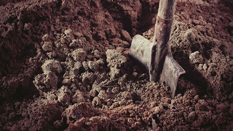 В Англии нашли десятки скелетов со связанными руками