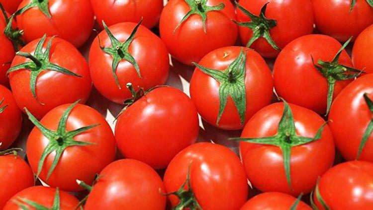 В Турции пожаловались на проблемы с отправкой помидоров в Россию