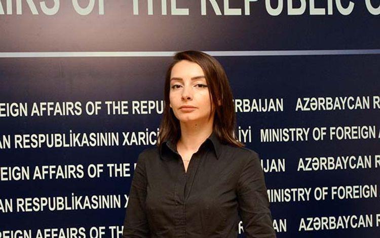Руководитель пресс-службы МИД: Вся ответственность за кровавую провокацию ложится на Армению