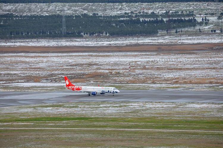 Самолет Баку-Аланья совершил вынужденную посадку в Анкаре