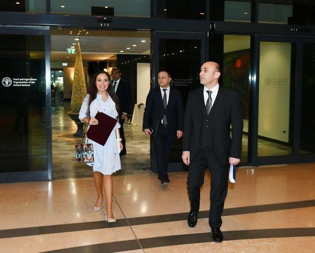 Вице-президент Фонда Гейдара Алиева Лейла Алиева встретилась в Риме с генеральным директором ФАО - ФОТО