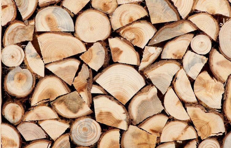 Минобразования Азербайджана закупает дрова