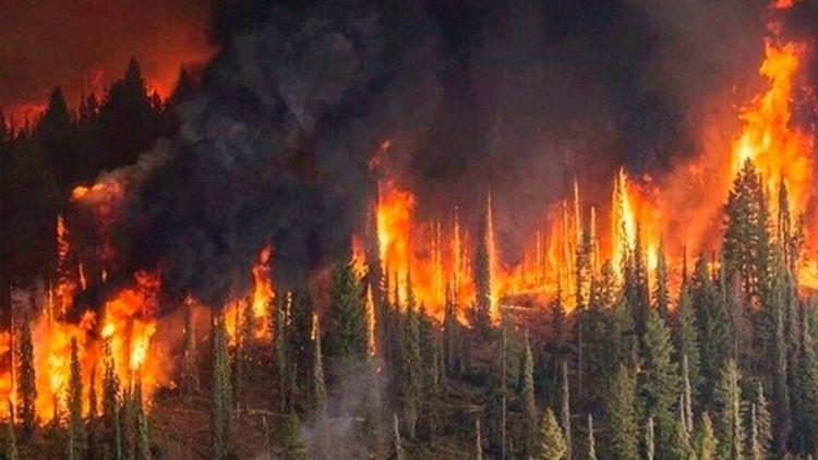 Avstraliyada meşə yanğınlarından əmələ gələn tüstü dumanı Çili və Argentinaya çatıb