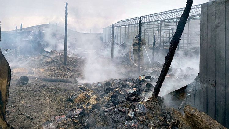 Death toll from construction trailer fire rises to eight people in Russia