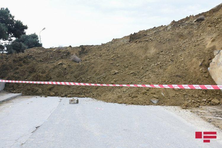 MENR: Visible growths observed in cracks on Badamdar landslide area