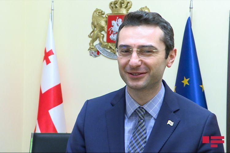 Вице-спикер парламента Грузии: Мы рядом с азербайджанским народом, с которым разделяем наши ценности и историю  - ИНТЕРВЬЮ