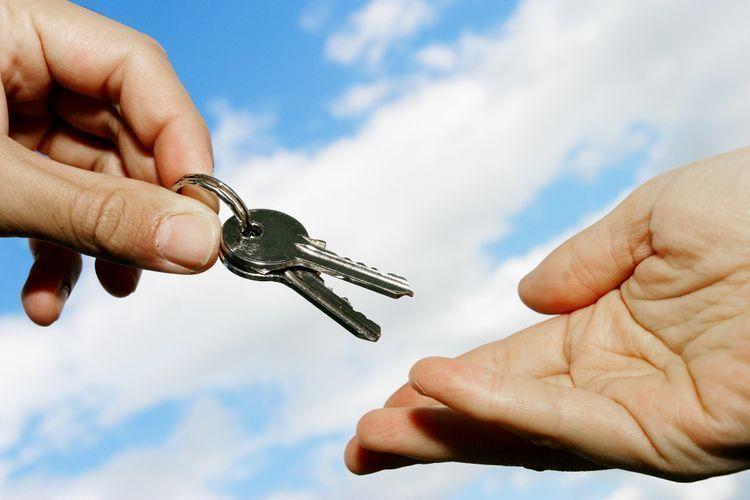 Названа причина проблемы, возникшей на сайте по механизму сдачи квартир в аренду