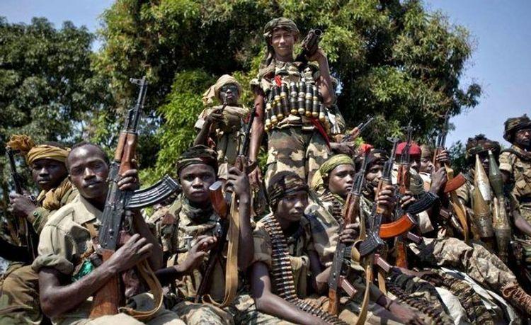 В ЦАР около 50 человек погибли в столкновениях за контроль над городом Бриа
