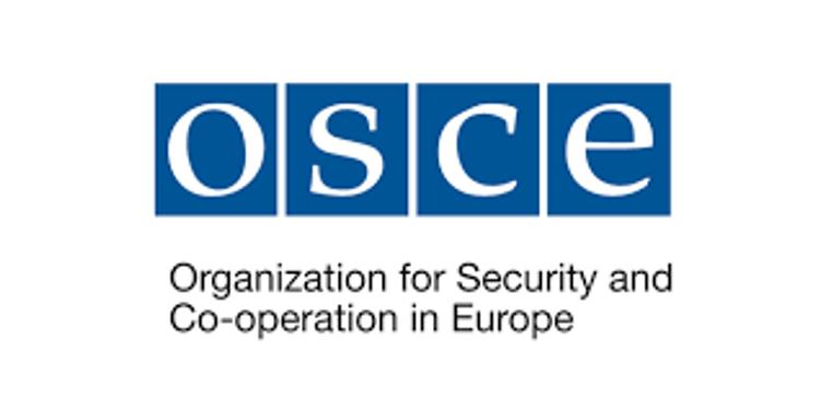 Назначен глава Наблюдательной миссии ОБСЕ в связи с парламентскими выборами в Азербайджане