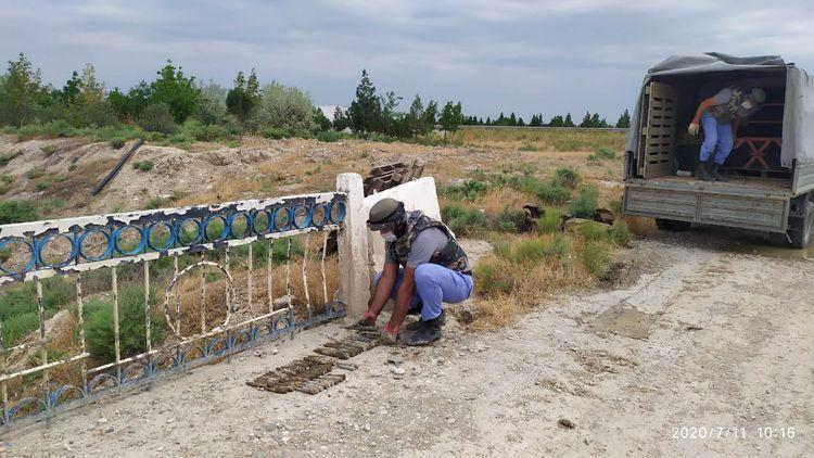 Под мостом в Хызы найдены 13 снарядов зенитных пушек - ФОТО
