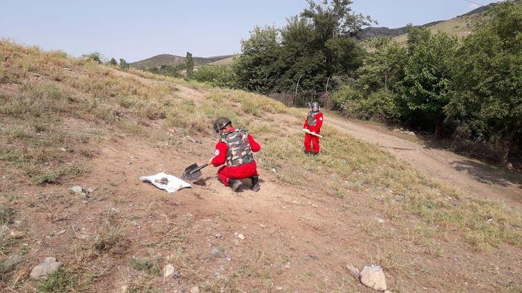 Tovuz rayonunun Ağdam kəndi ərazisində 1 ədəd minaatan mərmisi aşkar edilib - <span class='red_color'>FOTO</span>