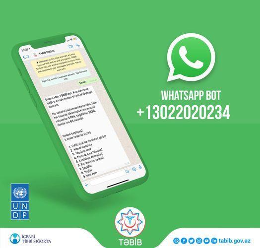 Передан в пользование бот WhatsApp для предоставления самой свежей информации о COVID-19