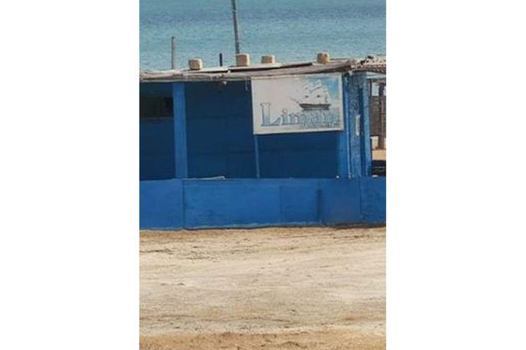 Bakıda dəniz kənarında karantin qaydalarını pozan kafe aşkarlanıb, 10 nəfər cərimələnib - FOTO