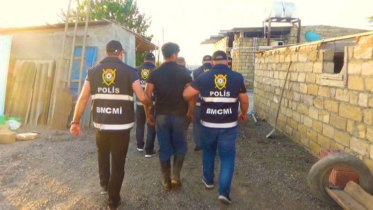 Задержаны члены организованной группировки, которые под видом говядины хотели продать 4 тонны конины - ВИДЕО