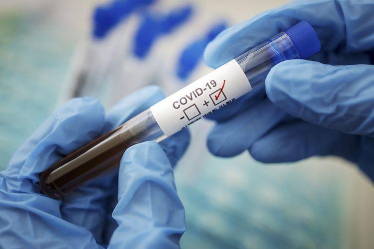 Percentage of coronavirus infection on regions announced