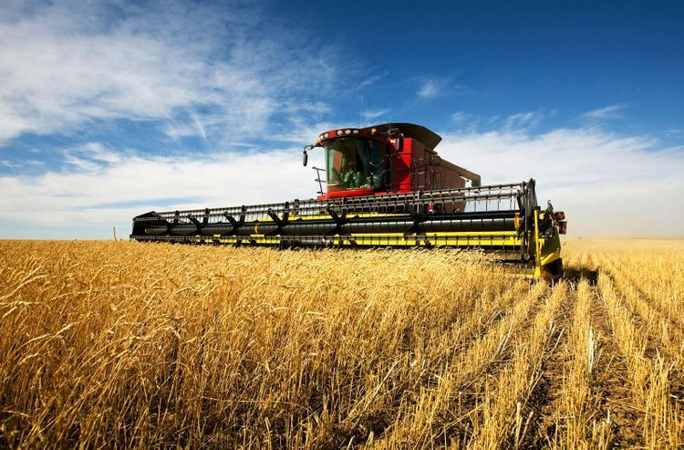 Azerbaijan increases agriculture production by 3.6%
