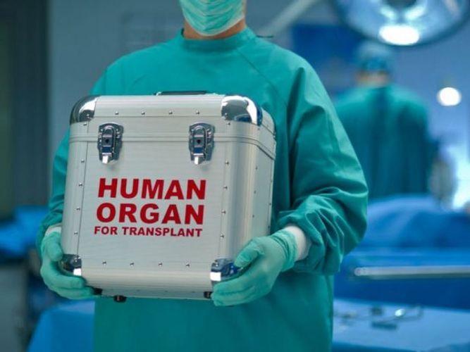 299 transplantation operations conducted in Azerbaijan last year