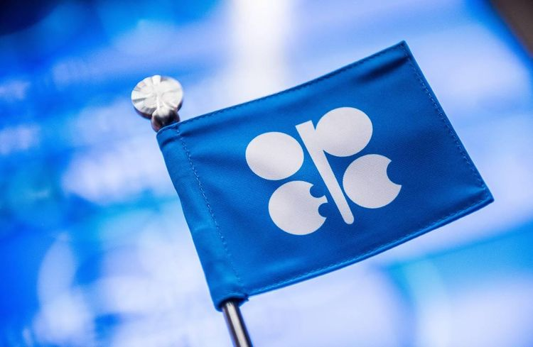 OPEC+ Monitoring Committee plans to meet on July 15 after June meeting