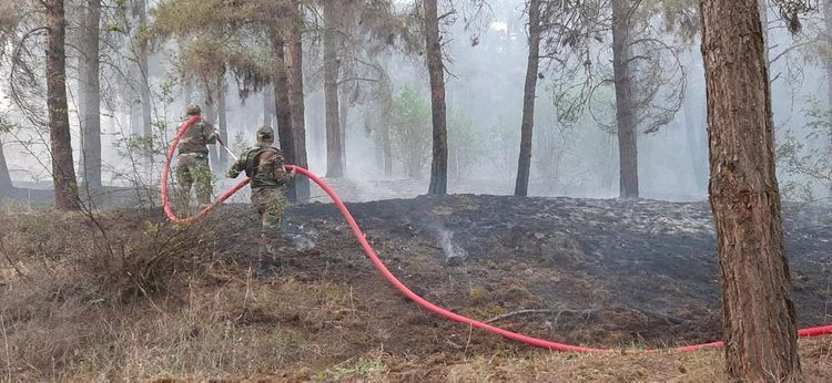 Fire on Agsu pass taken under control in a number of directions - <span class=