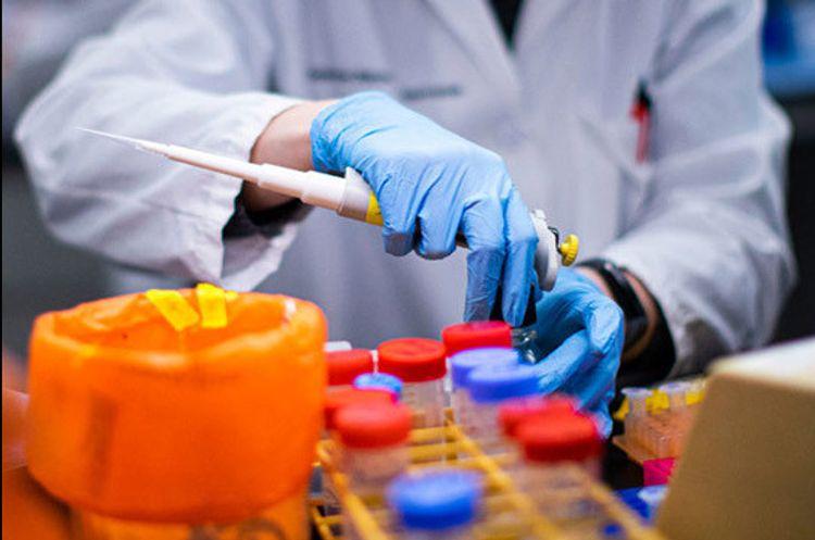 Armenia's coronavirus cases exceed 20,000, number of new deaths 350