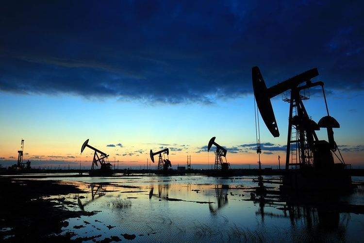 Some OPEC+ countries submit schedule of oil reduction