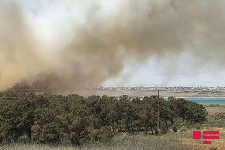 Fire near Jeyranbatan water reservoir extinguished - <span class=