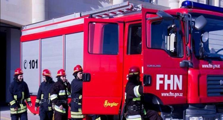 В Шамкире на винном заводе произошел пожар