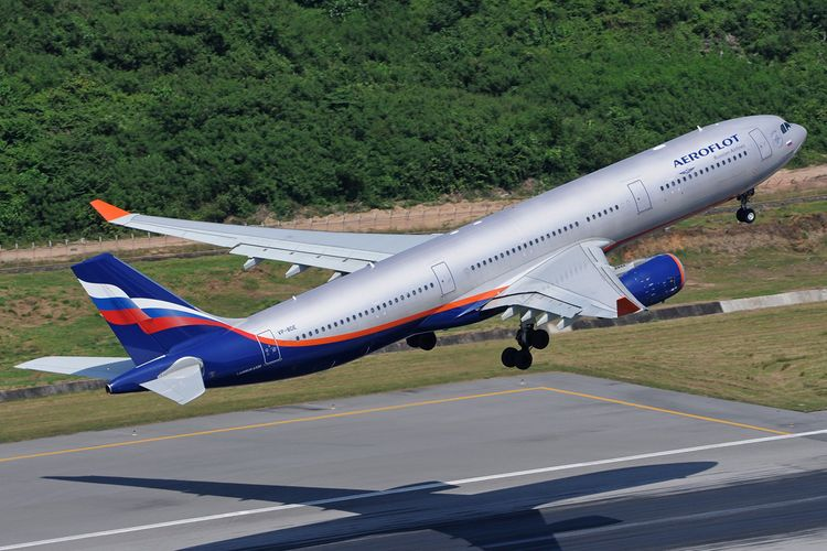 Plane makes emergency landing in Moscow