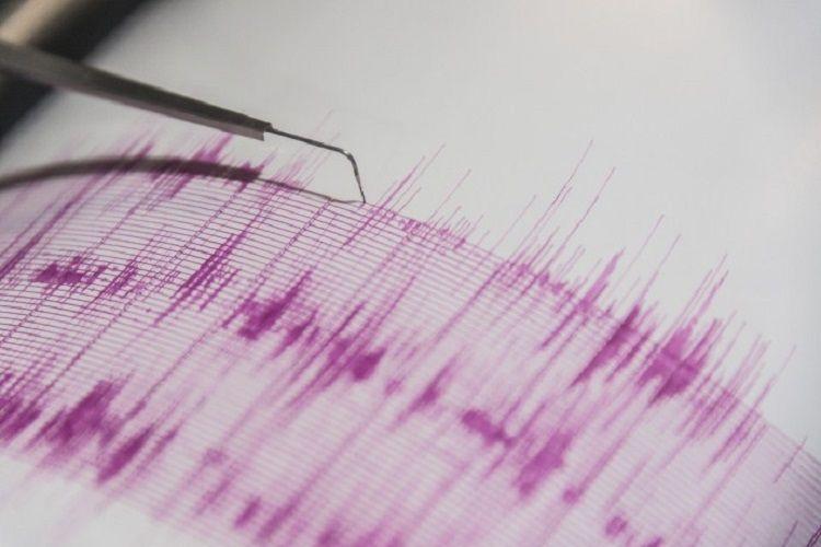 4-magnitude earthquake hits Iran