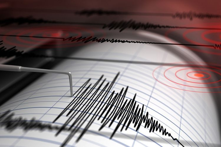 Magnitude 4.5 earthquake hits Iran