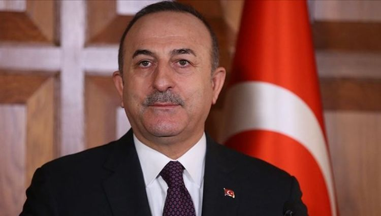 Turkish FM announces the number of Turkish citizens to be evacuated from Europe